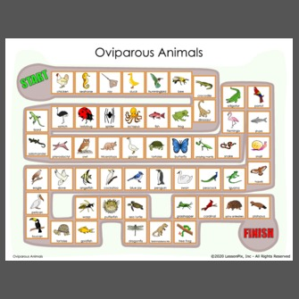 Oviparous Animal Sort {FREEBIE} | Oviparous animals, Oviparous animals  preschool, Oviparous animals kindergarten