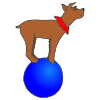dog on a ball Picture