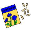 Cornflower Seeds Picture
