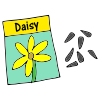 Daisy Seeds Picture