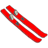 Skis Picture