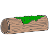 log Picture