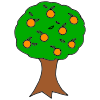 Orange Tree Picture