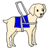 guide dog Picture