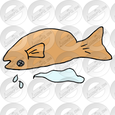 Dead Fish Picture For Classroom Therapy Use Great Dead Fish Clipart