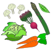 Vegetable+patch Picture