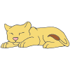 Sleeping Lion Cub Picture
