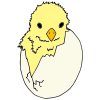Hatch+refers+to+an+animal+coming+out+of+an+egg. Picture