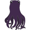 Wise+Octopus Picture