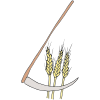 Harvest Wheat Picture