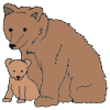 Bear and Cub Picture
