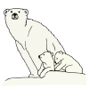 Polar Bear and Cub Picture