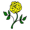 Yellow+Rose Picture