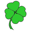 4+Leaf+Clover Picture