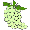 G-+Grapes Picture