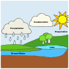 precipitation Picture