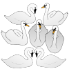 Seven Swans Picture