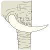 elephant tusk Picture