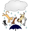 raining cats and dogs Picture