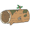 hollow log Picture