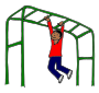 Monkey Bars Picture