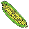 Corn+_+Maiz Picture