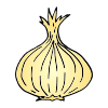 Onion Picture