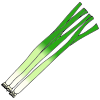 Green Onions Picture