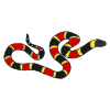python Picture