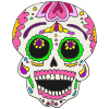 Excited Calavera Picture