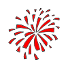 Firework Picture