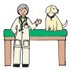 Veterinarian Picture