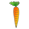 Carrot Picture