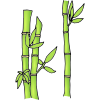 Bamboo+Forest Picture