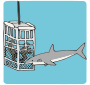 Shark Cage Picture