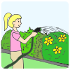 The+girl+is+watering+the+garden. Picture