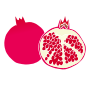 Pomegranate Stencil