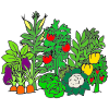 Vegetable+Garden Picture