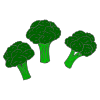 Broccoli Picture