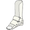 Orthotics Picture