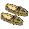 Moccasin Picture