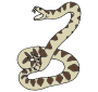 Rattlesnake Picture