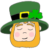 Sleepy Leprechaun Picture