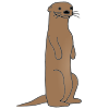 Otter Picture