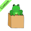 Frog+on+Box Picture